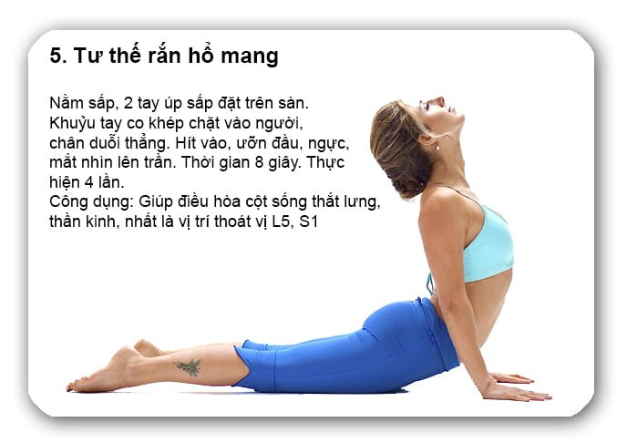 dung-quen-5-bai-tap-chua-thoat-vi-dia-dem-cot-song-that-lung-noi-tieng-cong-hieu-nay6